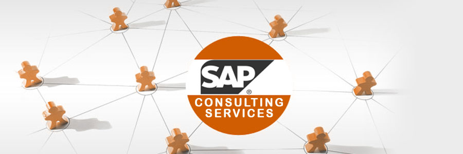 SAP Business Consulting